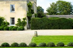 charlie noton's tree research / manor house, oxfordshire