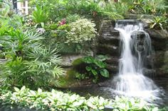 Learn how to build a Waterfall in your garden with the step-by-step instructions and tips in this Garden Ponds & Water Features Guide.