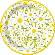 "Design Daisy Crazy Round Dinner Plate, 8 Count 10.5"" (Pack of 2) by Design Design. $12.16. 10 inch size. Dinner plates. Round. Design Design currently offers over 15,000 products. All the products are designed by their art department of 25 people and are manufactured to their specifications by vendors all over the world. Design Design product categories include social expression products, paper tableware, gift packaging products, soft goods, ceramic, metal, and o..."