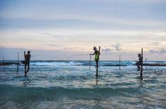 Sri Lanka   Pêcheurs à Koggala