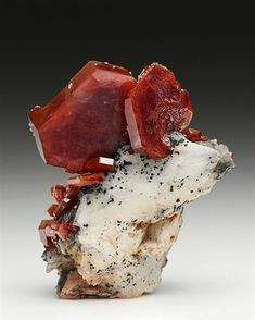 A substantial crystal of lustrous red-orange Vanadinite measuring to 2.4cm dominates the white Baryte crystal matrix, with a 1.5cm Vanadinite standing at an angle in front of the largest crystal. Several more Vanadinite crystals are also in attendance. A fine display of Vanadinite crystals from Mibladen, Morocco.