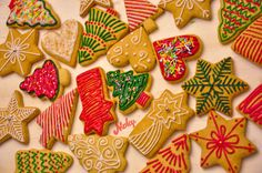 #gingerbread #cookies #royal #icing #medenjaci