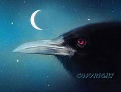 A close up of a black Raven under the moon, done in  gouache watercolors and then enhanced digitally, by Robert Foster
