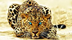 Art wallpaper, artistic, graphic, design, wild animal, blue eyes, animals