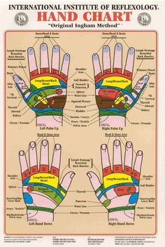 The Absolute Beginner's Guide To #Hand #Reflexology: http://www.massageboss.com/hand-reflexology/