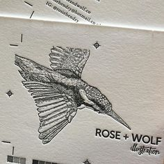 WEBSTA @ rosiehendry - @jukeboxprint sent me a sneak peak of my business cards heading into the press! In love and will share a photo of the finished result soon 💕#ink #illo #illustration #black #blackandwhite #businesscards  #branding #birds #bird #pen #botany #botanical #pursuepretty #theartofslowliving #blackwork #creative #design #drawing #instadaily #instagood #instamood #instalike #nature #naturelovers #picoftheday #photooftheday #bestoftheday #vintage