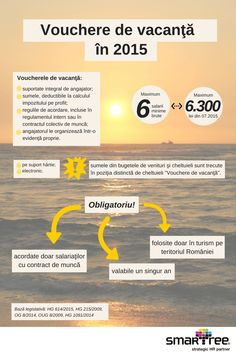 #Infografic #HR Voucherele de vacanta in 2015 #Smartree