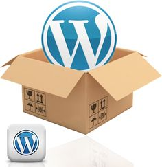 Wordpress Setting-up Services