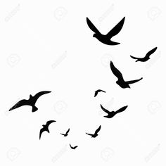 Illustration of Silhouette of a flock of birds. Black contours of flying birds. Isolated objects on white background. vector art, clipart and stock vectors. Flying Bird Vector, Flying Bird Drawing, Crow Flying, Bird Drawings, Flying Birds, Flying Bird Silhouette, Silhouette Painting, Animal Silhouette, Bird Silhouette Tattoos