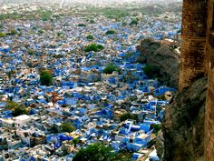 View of the blue city from the fort (Jodhpur, India)