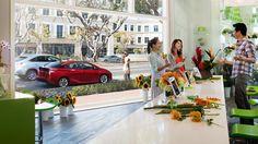 34 Toyota Lifestyle Ideas Toyota Toyota Dealership Toyota Cars
