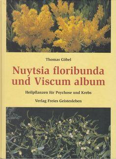 Nuytsia Floribunda und Viscum album * Heilpflanzen für Psychose und Krebs Göbel