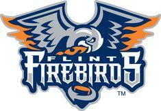 Flint Firebirds Primary Logo (2016) -