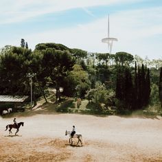 At Hipica La Foixarda in Barcelona, horses help people with disabilities heal. The horses' movements improve patients posture, strength and coordination. 🐴  #barcelona #tinyoasis