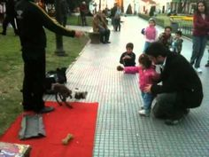 Watch This Talented Dog Puppeteer Capture The Attention And Imagination Of A Little Girl.