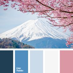 YES to the muted pink on the right. This is another good color palette.