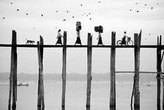 Лучшие фото по версии The Sony World Photography Awards – Журнал – His.ua