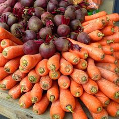 A winter bouquet of beets and carrots #sustainability #seasonal #shoplocal #eatlocal Re-post by Hold With Hope