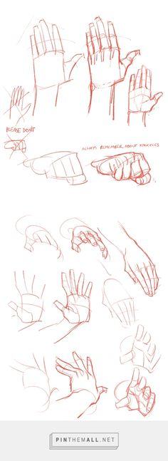 """"""" Anonymous said: do you have a specific structure when drawing hands cause i you draw the most realest hands out there (ps. your art is amazeballs) """" I focus on the basic shapes first, and I find. Hand Reference, Anatomy Reference, Drawing Reference, Drawing Techniques, Drawing Tips, Drawing Hands, Learn To Draw, How To Draw Hands, Manga Posen"""