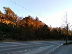 Mine bilder Country Roads, Pictures