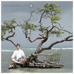 10 Beneficios* Yoga Creativo: Meditación en el Mar Caribe con Rafael Martinez