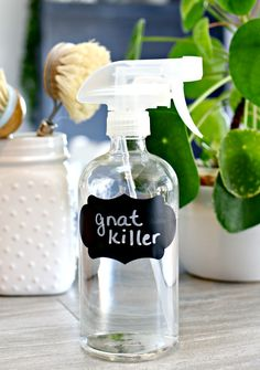 3 Ingredient Homemade Gnat Trap & Gnat Killer - If your home is infested with fruit flies, then you need this easy DIY gnat Trap & Gnat killing spray in your life!