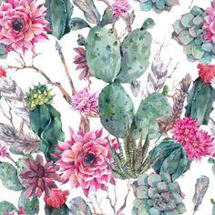 Cactus watercolor se
