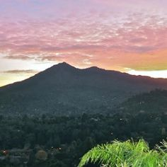 Mount Tamalpais, Marin County | The most epics hike ever, no matter which trail.