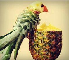 Pineaple - Bird