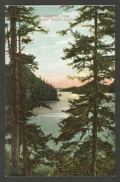Deception Pass Puget Sound WA Washington Vintage Postcard