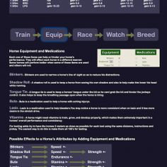 A virtual horse racing games where you can own, train and race virtual horses online. Interact with a dynamic community of players.