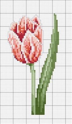 tulipano+rosso+E+-+capolavori+4.JPG (550×940)