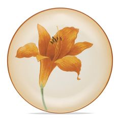 Noritake Floral Accent Plate (this one will complete my collection)