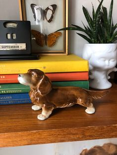 Excited to share this item from my shop: Victorian long haired wiener dog dachshund porcelain dog figurine excellent condition made in germany Long Haired Dachshund, Doge, Chinoiserie, 1950s, Pup, Germany, Porcelain, Victorian, Etsy Shop