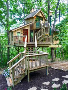 animal planets treehouse masters