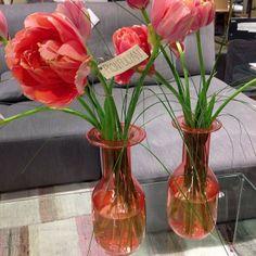 Nyhet på Habitat. Vackra vaser i flera härliga färger, perfekt för att plocka in lite vårkänslor i hemmet som tex med dessa piontulpaner utvalda av vår egen florist. Vas 300kr, tulpanerna hittar du tex här utanför på Hötorget. Trevlig helg! #habitatsverige #vas #inspiration #flower #tulip #peonytulips