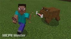 MCPE Resource-Boar_Addon-Free Download in MCPE Master