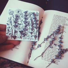 Dried lavender Art