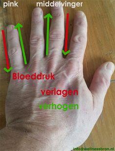 SFQ Oefening om je bloeddruk te verlagen of te verhogen. Hoe: Hou je linkerhand omhoog en masseer zijkanten van de middelvinger en de pink. Voor hoge bloedruk masseer of druk stevig naar beneden. Bij een lage bloeddruk doe je het net andersom, dan masseer je alleen omhoog. Herhaal dit met je andere hand. terwijl je dit doet met aandacht zeg erbij: al mijn energie kanalen staan open en mijn bloeddruk is naar beneden tot normaal of anders om. Hoe lang: 1-3 min op elke vinger