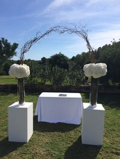 Willow arch with skirt of hydrangeas on white pillars