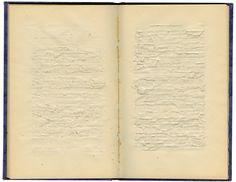 Ann Hamilton - indigo blue books