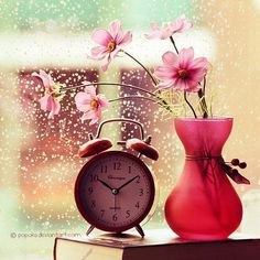 #clock #flowers #vase #color #pink
