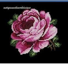 Sunshine Home Decor Cross Stitch Fruit, Cross Stitch Borders, Cross Stitch Rose, Cross Stitch Flowers, Cross Stitching, Cross Stitch Embroidery, Hand Embroidery, Cross Stitch Patterns, Embroidery Flowers Pattern