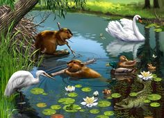 Paradise Pictures, Dream Pictures, Art Pictures, Animal Pictures, Disney Land Pictures, Spring Images, Water Drawing, Pond Life, 3d Painting
