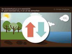 Het ontstaan van fossiele brandstoffen - ClimateChallenge