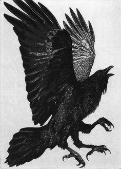 Raven.    http://nirvikalpa.tumblr.com/post/39782345610/my-name-means-from-the-raven-farm