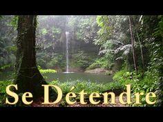 Chant des Oiseaux - 2 Heures - Se Détendre Et Dormir - YouTube Sound Of Rain, Anti Stress, Nature Sounds, Nighty Night, Qigong, Meditation Music, Relaxing Music, Reiki, Youtube
