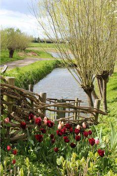 Hollands tafereeltje | De Landelijke Tuinblog