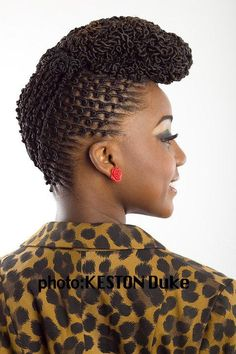 Locs Updo Hairstyle