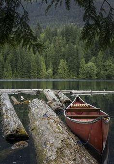 canoeing. #OrvisWomen